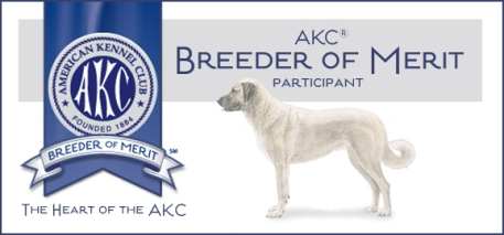 Breeder of Merit -emb